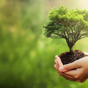 EPD – Environmental Product Declaration