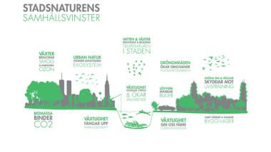 C/O City skapar levande städer