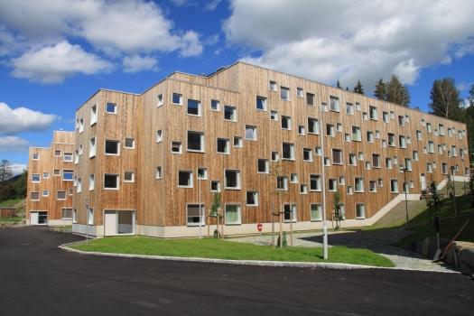 Kebony Scots Pine-Sopp Lillehammer-(c) J+©rn Hindklev, Byggeindustrien (13)-min