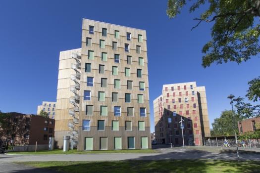 kebony-character-moholt-student-housing-c-mdh-arkitekter-9-min