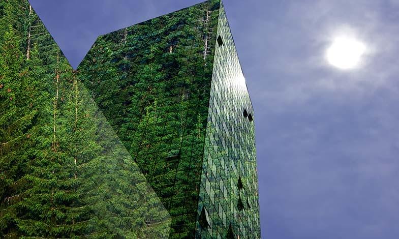 Gröna obligationer – symbolhandling eller verklig miljönytta?