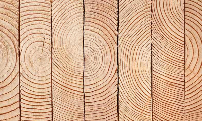 Sågverken största utsläppskällan vid träbyggnation