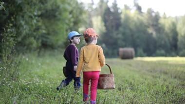 Huddinge utsedd till Sveriges bästa naturvårdskommun