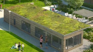 Riksbyggen ska sköta gröna tak i Göteborg