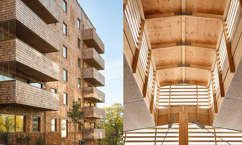 Kina hämtar inspiration från svenskt träbyggande