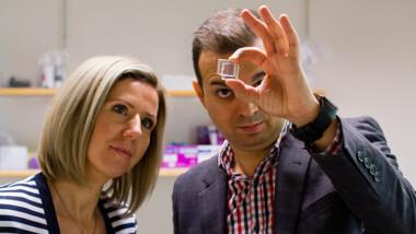 Kombinationen av dynamiskt glas och solceller utforskas i nytt projekt