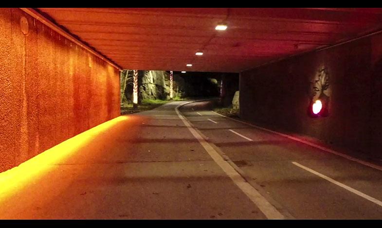 Tidstunnel och japanskt bad tävlar om Svenska Ljuspriset