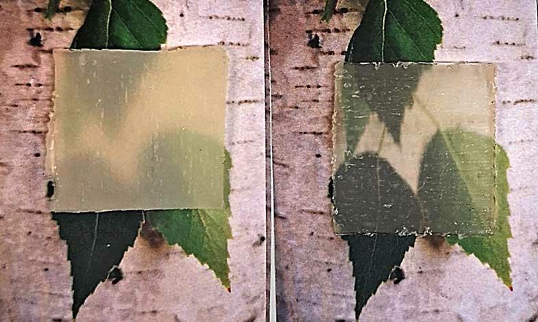 Ny version av transparent trä reglerar värme