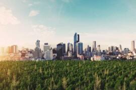 Ny rapport: Byggsektorn kan bli koldioxidneutral till 2050