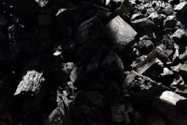 Arkitektbyrå satsar på biokol för att neutralisera koldioxidutsläpp