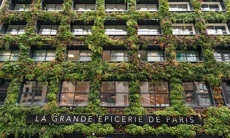 Framtidens hus är gröna