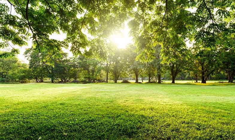 Norconsult hjälper Vårgårda med plan för en hållbar småstad
