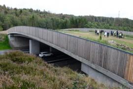 Professur ska stärka kompetensen inom landskapsanpassad infrastruktur
