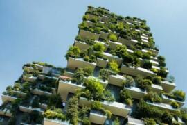 Vinnova och Formas söker nya idéer för klimatanpassning
