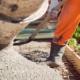 Cementbrist leder till omfattande byggstopp